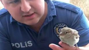 Polis memurundan kuşa kalp masajı