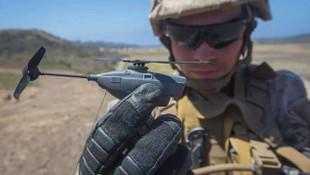 İşte ABD'nin yeni silahı: Siyah eşek arısı