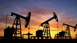 O ilimizde de petrol aranacak