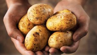 Patates fiyatlarıı düştü