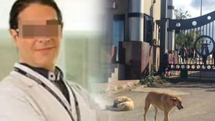 Köpeği bıçaklayarak öldüren profesörün davasında karar yok !