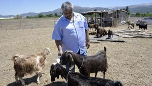 18 futbolcu satıp keçi aldılar !