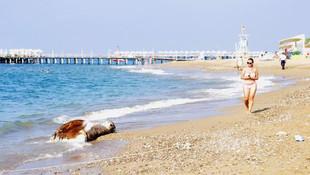 Antalya'da sahile vurdu, görenler şaştı kaldı