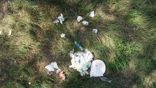 Bayram tatilinde piknikçiler Aydos Ormanı'nı katletti