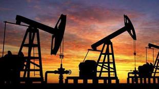 TPAO'dan petrol müjdesi ! 2 petrol sahası genişletiliyor