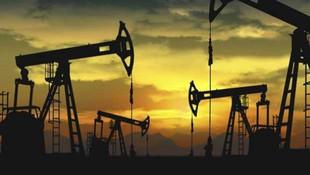 TPAO Abyei'de petrol arayacak