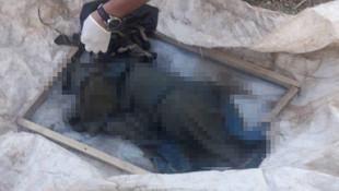 Van'da vahşet ! Daha yeni doğmuş bebek cesedi bulundu