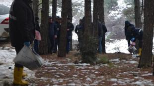 Kan donduran olay ! Ormanda kesik kol bulundu