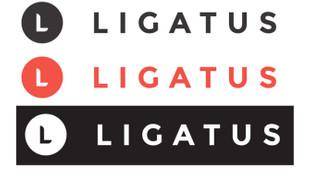 Ligatus Türkiye'den çekiliyor