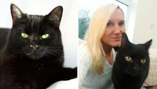 Kayıp kedi 10 yıl sonra eve döndü