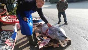 Marmara Denizi'nde yakalandı ! Tam 150 kilo...