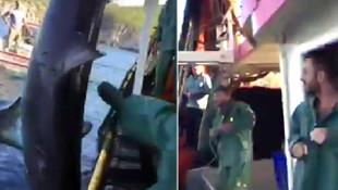 Balıkesir'de köpek balığına tekme ve yumruk atan balıkçıya ceza