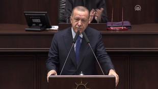 Erdoğan'dan ''operasyonu durdurun'' çağrılarına yanıt: Size bir teklifimiz var