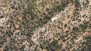 Fethiye'de paraşüt faciası: 1 ölü, 2 yaralı