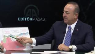 Çavuşoğlu: Terör devleti kurulmasını engelledik