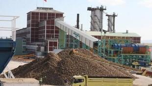 İşte yeni özelleştirme stratejisi: Türkiye'de şeker fabrikası kalmayacak!