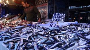 Şoke rapor: Türkiye'deki iki balıktan birinde mikroplastik var!