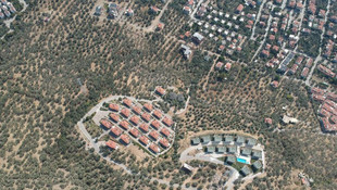 2,5 milyon zeytin ağacı gitti, bu villalar geldi