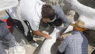 Kayseri'de 7,5 milyon yıllık keşif