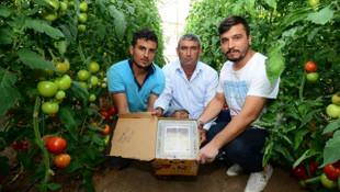 Canan Karatay ''sofrada yeri yok'' dedi, üreticiler ayaklandı