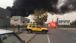 Sakarya'da geri dönüşüm fabrikasında büyük yangın