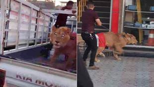 Bu kadarına da pes ! Protestolara aslan getirdi