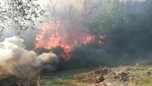 Osmaniye'de orman yangını ! Evler tahliye edildi