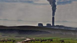 Filtresiz bacalı termik santrallerin izni uzatılıyor!