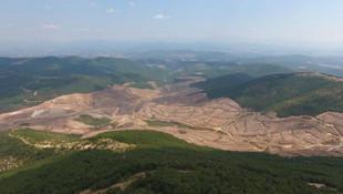 Kaz Dağları'nı katleden şirket, küçülmeye gidiyor
