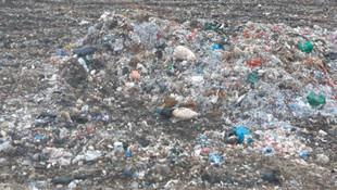 Çöp deposunda bebek cesedi bulundu
