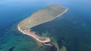 Balıkesir'de sahibinden satılık 135 milyon TL'lik ada!