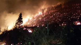 İçişleri Bakanlığı'ndan yangın açıklaması