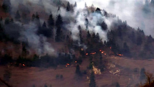 Karadeniz'i kim yaktı ? PKK üstlenmişti, Bakanlık'tan açıklama geldi