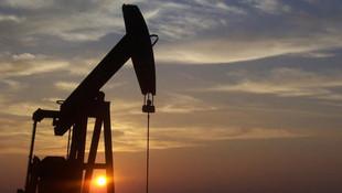 Günlük petrol üretimini 500 bin varil azaltma kararı