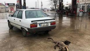 Köpeği otomobile bağlayıp sürükledi