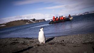 Türk ekibi Antarktika'ya ayak bastı