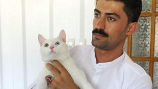 Kedisini hayata döndürebilmek için 190 bin TL harcadı ama...