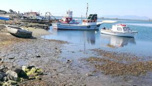 Marmara Denizi çekildi; deprem korkusu hortladı