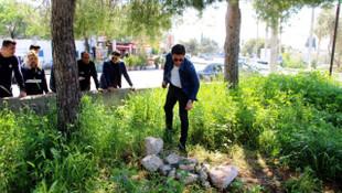 Bodrum'da polisi alarma geçiren mezar
