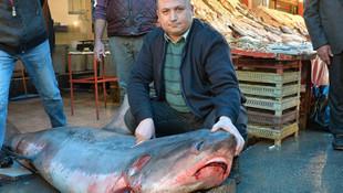 Köpekbalığını yakalayıp sergilemişti... Cezası belli oldu !
