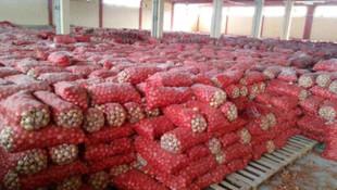 Tohumluk soğanın fiyatı 25 TL'ye çıktı
