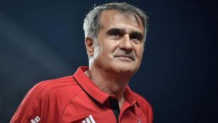 Şenol Güneş, Arnavutluk ve Moldova maçlarında A Milli Takım'ın takımın başında