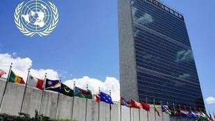FETÖ ve PKK'lılar BM'yi karıştırdı !