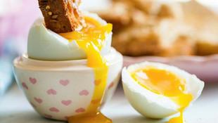 Her gün yumurta yiyenler dikkat