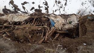 Çatak'ta ahır çöktü: 43 hayvan telef oldu