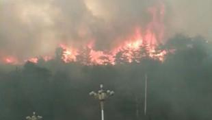 Orman yangınında 24 itfaiyeci öldü