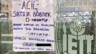 Otobüs duraklarında 'satılık böbrek' ilanı