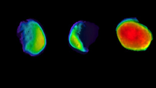 Mars'ın dolunayı ilk kez görüntülendi