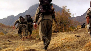 Şırnak'ta 2 terörist teslim oldu