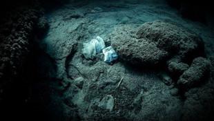 Yuh! Dünya'nın en derin noktasında bakın ne bulundu